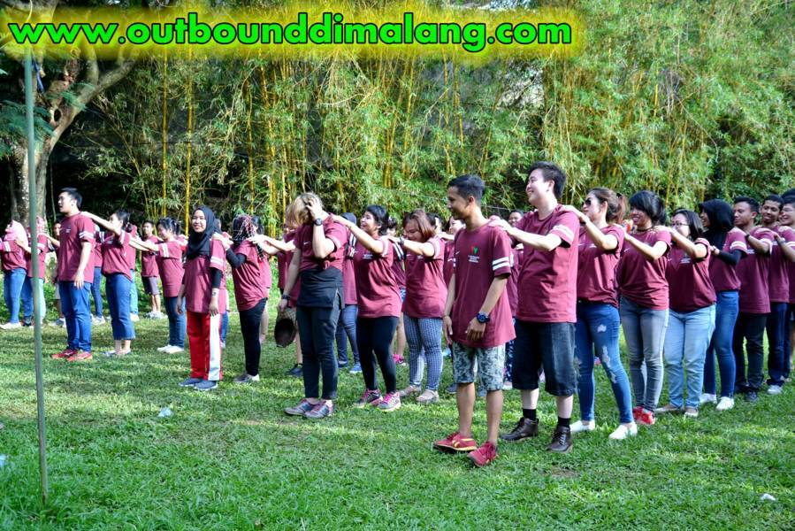 watermarked-outbound (242) (FILEminimizer)