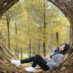 Wisata Goa Pinus Malang menjadi spot foto menarik